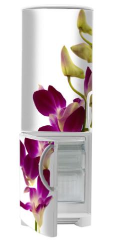 naklejki orchidee