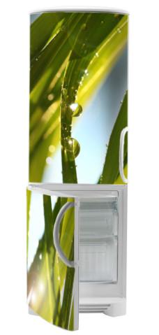 roślinne naklejki na lodówki