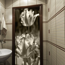 fototapeta na szafę tulipany