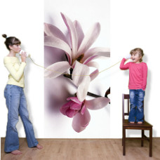 naklejki magnolie