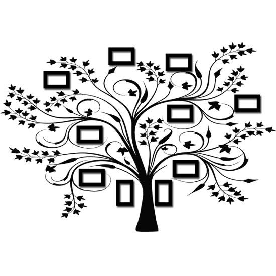 drzewo genealogiczne z... Tree Pencil Drawing