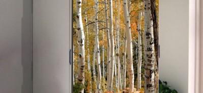 naklejka na szafę las brzozowy