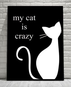 plakaty z kotami