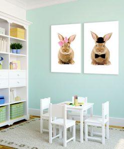 króliki na plakatach