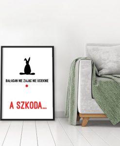 plakaty z królikiem