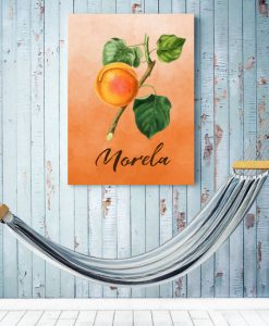 plakaty z morelą