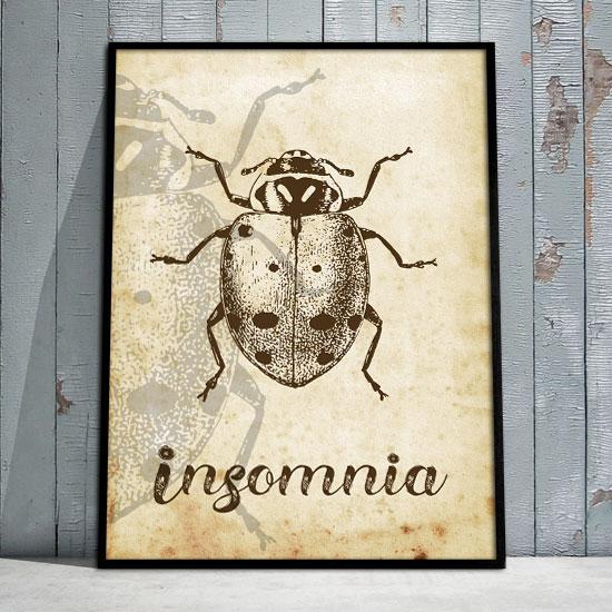 Plakat Samoprzylepny Z Biedronka I Napisem Insomnia
