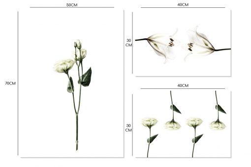 dekoracje z białymi kwiatami