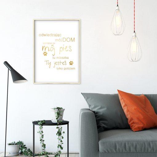 złoty napis o psie na biało-złotym plakacie