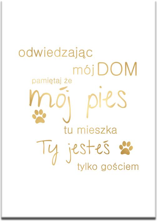 sentencja o psie na plakacie