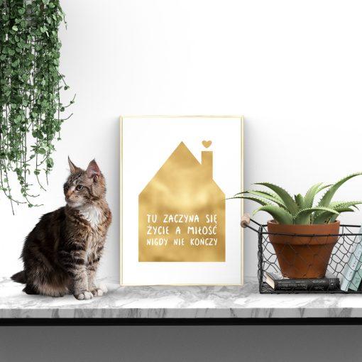 złoty domek na plakacie