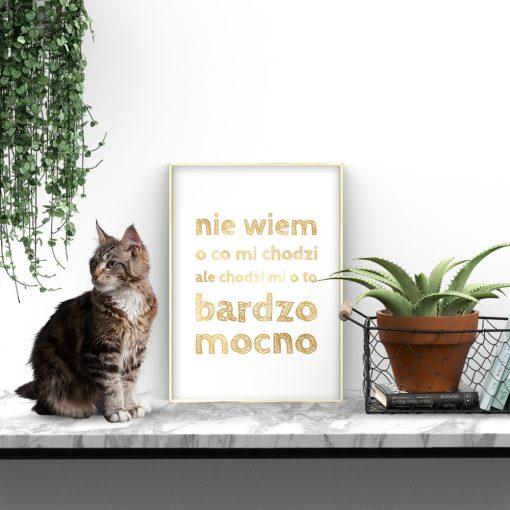 salon ze złotym plakatem