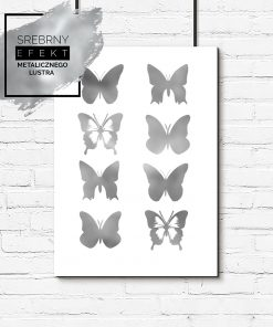 plakat z motylami