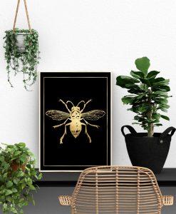 motyw muchy na plakacie
