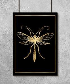złoty plakat na ścianę z ważką