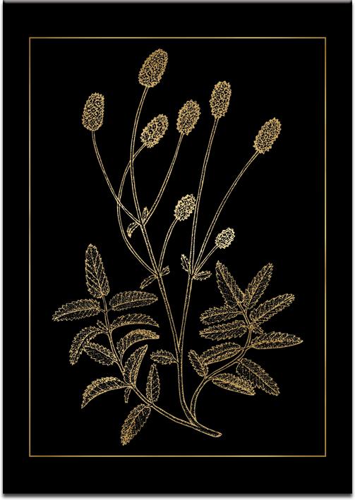 złoty plakat z kwiatami