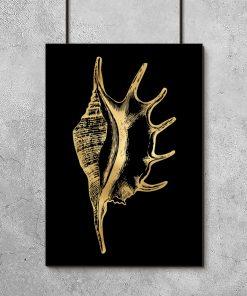 muszelka na metalicznym plakacie