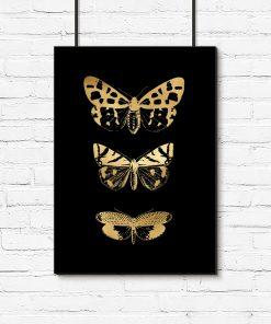 pionowy plakat z motywem motyli