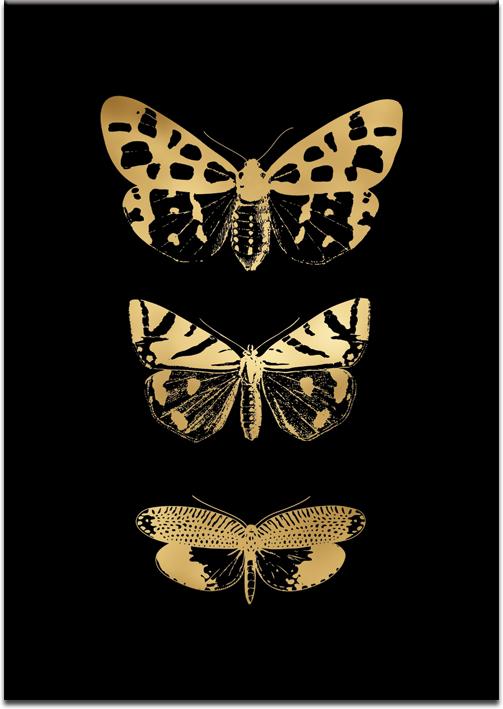 motylki na złotym plakacie