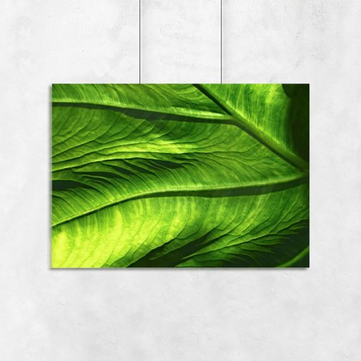 Plakat z zielonym liściem