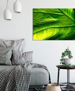 Zielony plakat do salonu