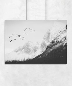 Plakat z motywem ptaków i gór