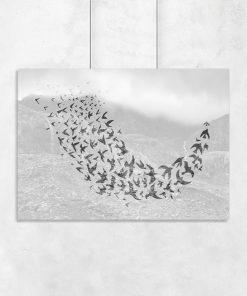 Plakat ze wzorem ptaków