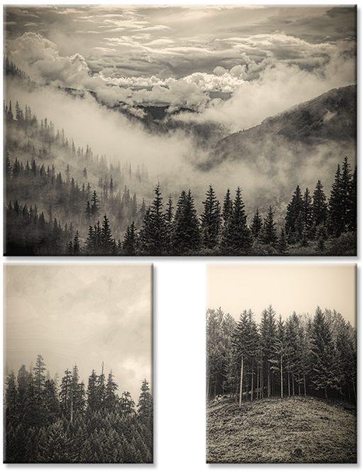 Plakat tryptyk z motywem gór i lasów