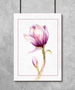 Plakat z pąkami magnolii