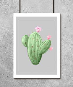 Plakat z zielonym kaktusem