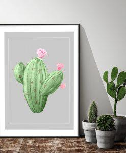 Plakat z kaktusem do salonu