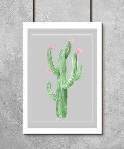 Plakat z kwitnącym kaktusem