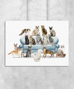 Plakat z ilustracjami kotów