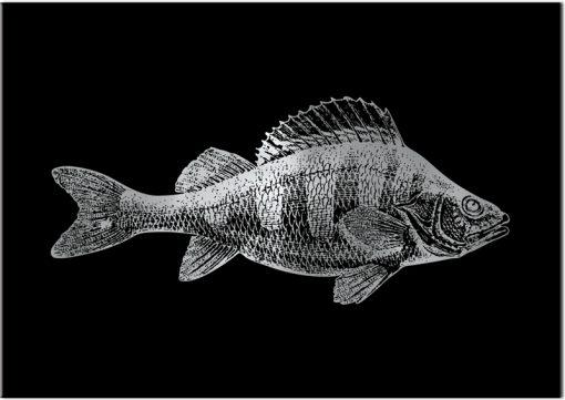 Plakat jak srebro z motywem ryby