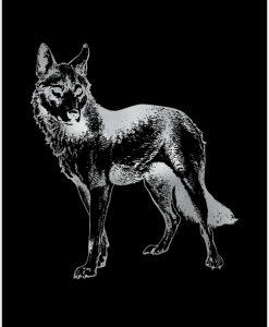 Posrebrzany plakat z wilkiem