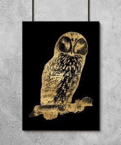 czarno-złoty plakat i sowa