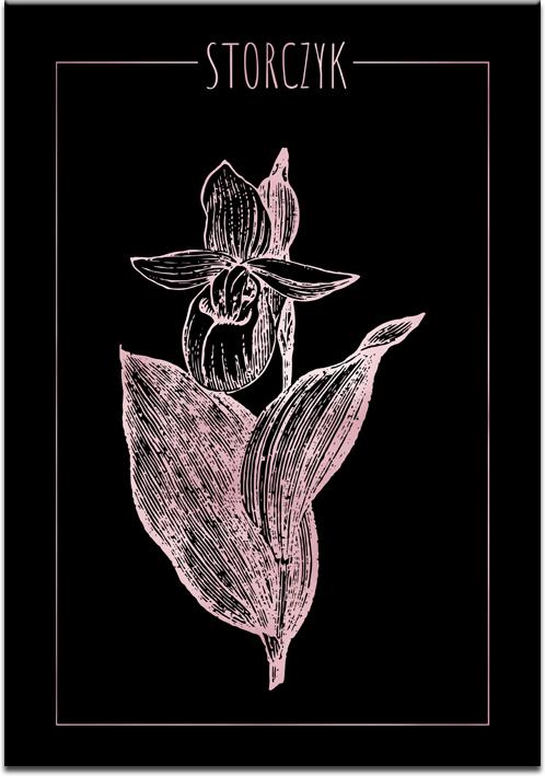 Czarny plakat z różowo-złotym storczykiem