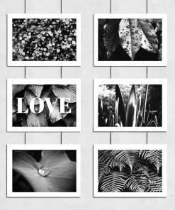 Plakaty z liśćmi do sypialni