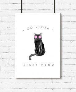 Plakat kot różowe okulary