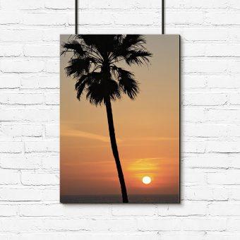 Plakat zachód słońca i palma