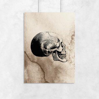 Plakat z czaszką