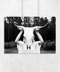 Plakat czaszka byka