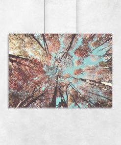 Plakat z jesiennymi drzewami