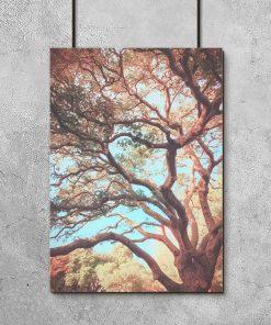Plakat z motywem gałęzi drzewa