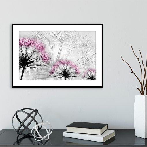 plakat różowe dmuchawce