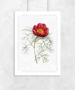 Plakat z ilustracją kwiatu