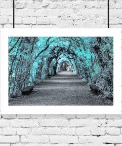 plakat ogród boboli