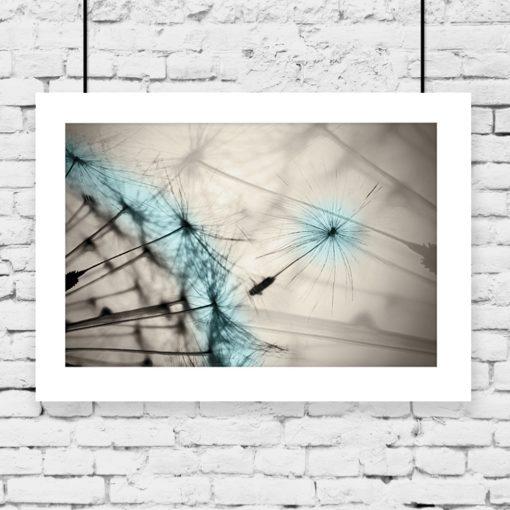 beżowy plakat z niebieskim dmuchawcem