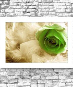 plakat z zieloną różą