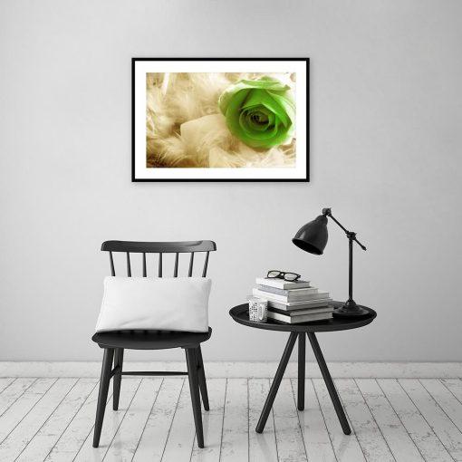 plakat róża zielona